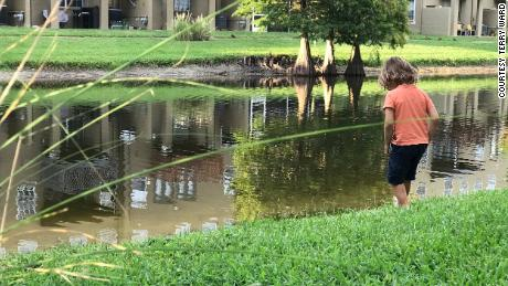 The author's son, Nico, connects with the neighborhood wetlands.