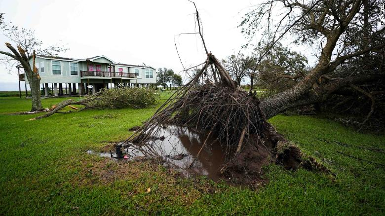 An uprooted tree sits in the aftermath of Hurricane Laura in Sabine Pass in Port Arthur, Texas, on Thursday.