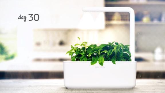 Click and Grow Smart Garden 3 Indoor Herb Garden