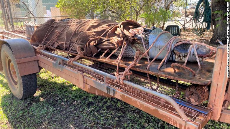 Wildlife rangers caught the biggest crocodile in years in the Flora River Nature Park in Australia's Northern Territory.