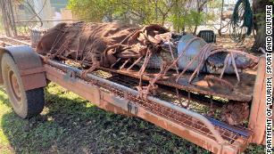Massive 14-foot crocodile captured at tourist spot in Australia