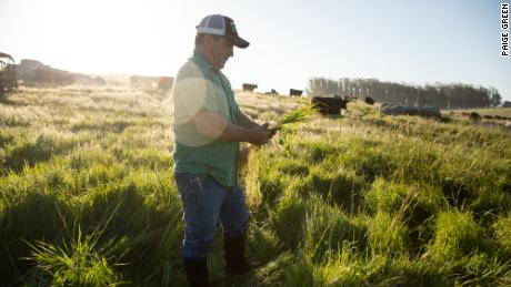 Hamburgers are hard on the planet. These cattle ranchers are trying to change that