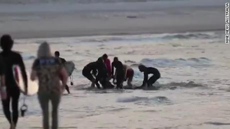 People rushed to bring the shark bite victim to shore after the attack.