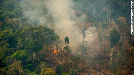 Fire in the Jaci-Paraná Extractive Reserve, in Porto Velho, Rondônia state, in mid-August.