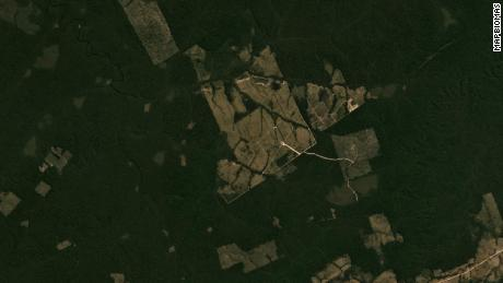 Satellite view of forests in Apui in July 2019.