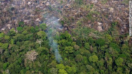 A section of Amazon rainforest in the Candeias do Jamari region near Porto Velho, in the Brazilian state of Rondonia, on August 25, 2019 after a spate of wildfires.