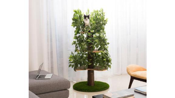 Archie & Oscar 60-Inch Henrietta Cat Tree