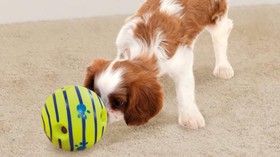 Juguete interactivo para perros Wobble Wag Riggle Ball