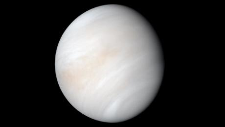Venus may have been able to support life had Jupiter not changed its orbit.