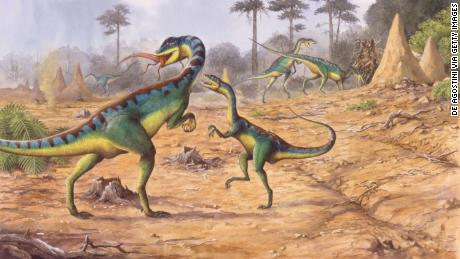 The newly identified mass extinction event helped dinosaurs to dominate the Earth.