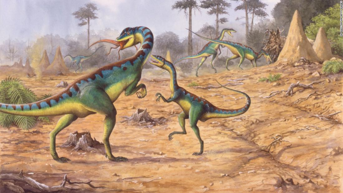 This previously unknown mass extinction gave rise to dinosaurs, scientists say