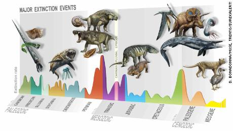 Summary of major extinction events through time, highlighting the newly identified Carnian Pluvial Episode at 233 million years ago.