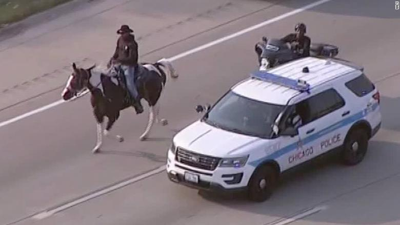A man known as the 'Dreadhead Cowboy' was arrested for riding his horse on a Chicago highway