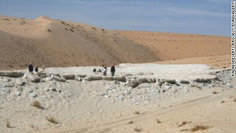 Researchers were surveying the Alathar lake in Saudi Arabia when they made the discovery.