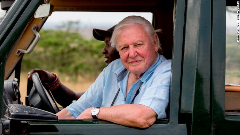 David Attenborough offers his 'witness statement,' and a warning, in 'A Life on Our Planet'