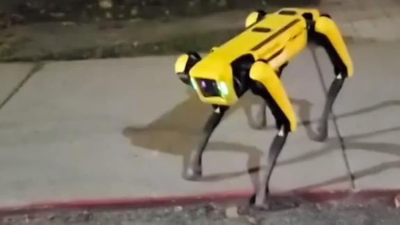 spot robo dog moos pkg 0929