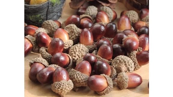 Haodeba Decorative Fake Mini Acorns, 50 Pieces