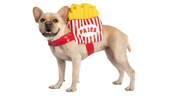 Thrills & Chills Pet Halloween French Fries Pet Costume