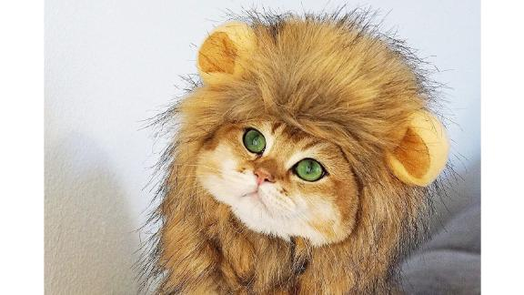 OMG Adorables Cat Lion Mane