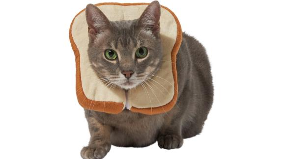 Frisco Bread Cat Costume