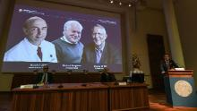 Nobel Prize in Medicine awarded to US-UK trio for discovery of hepatitis C virus