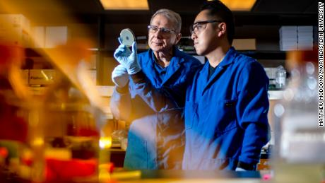 Microbiologist Kim Lewis of Northeastern University and Yu Imai, a postdoctoral research associate, observe a petri dish encasing darobactin, a new type of antibiotic that can selectively kill gram-negative bacteria in October 2019.