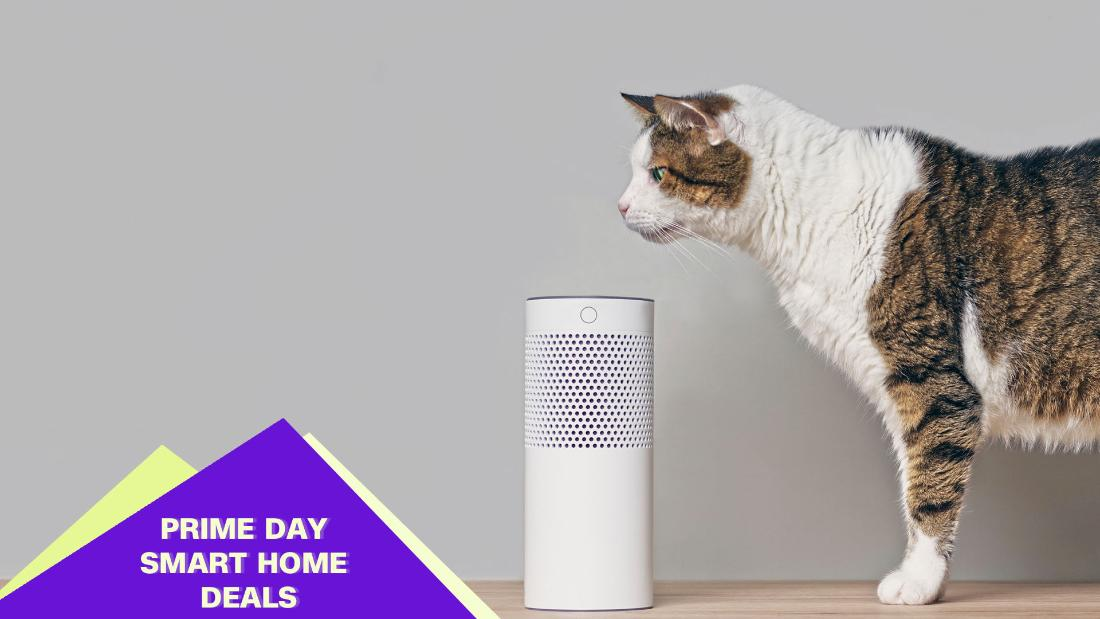The best smart home deals to nab during Amazon Prime Day