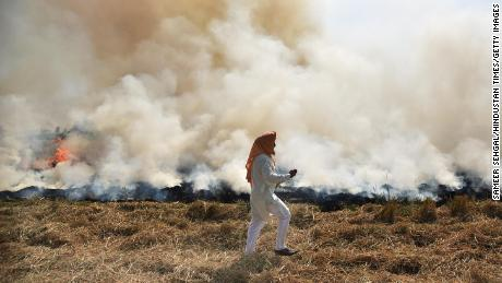 A farmer burns straw stubble after harvesting a paddy crop on October 17 in Amritsar, India.
