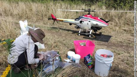 A person prepares to conduct drone seeding to help regenerate Australia's forests in Queensland after the devastating bushfires.