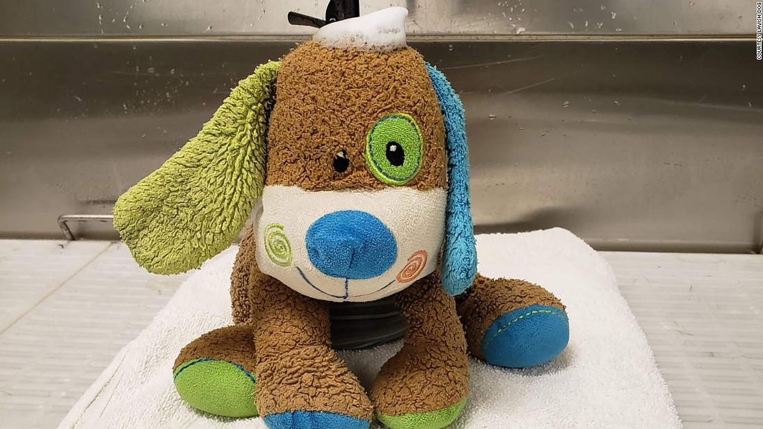 A little boy lost his stuffed puppy near a dog spa. So the groomers decided to give the toy a spa day.