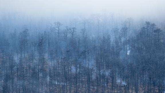 Structures burned by the Cal-Wood Fire are seen in Boulder County, Colorado, on October 18.