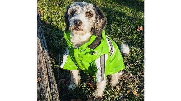 Pet Life Green Reflecta-Glow Reflective Waterproof Adjustable Pet Raincoat
