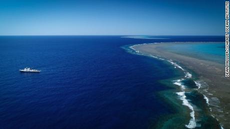 & # 39; Masivo & # 39;  Arrecife de coral más alto que el Empire State Building descubierto en Australia