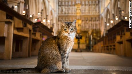Doorkins Magnificat, a much loved resident of Southwark Cathedral, has been honored in a special memorial service after passing away last month.