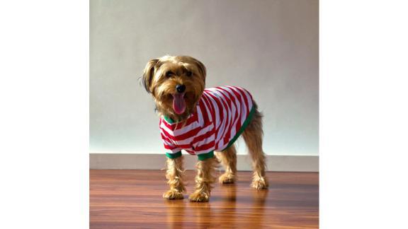 لباس خواب سگ PeachFuzzGifts