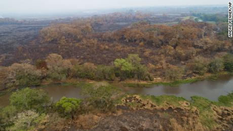 A recently-burned area of the Encontro das Aguas park in the Pantanal wetlands, pictured on September 12, 2020.