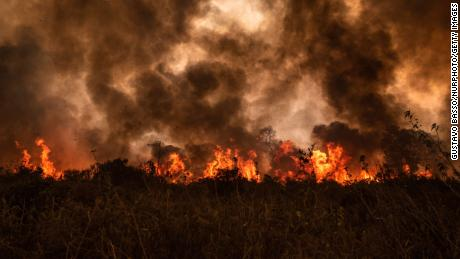 The world's largest wetlands are on fire. That's a disaster for all of us
