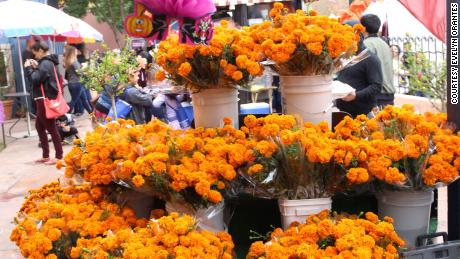 Marigolds are a staple at Día de los Muertos celebrations and are used to decorate ofrendas.