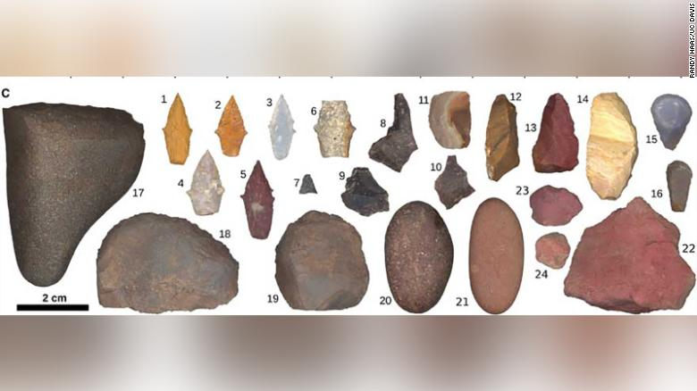 Prehistoric hunters weren't all male. Women killed big game, new discovery suggests