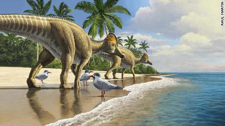 New fossil discovery suggests dinosaurs traveled across oceans