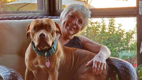 Pet adoption program expands to help seniors keep pets amid the pandemic