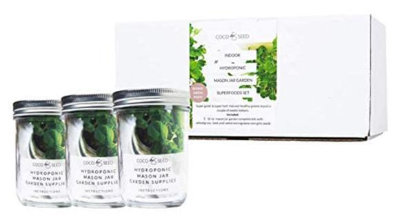 Coco and Seed Hydroponic Mason Jar Garden Superfoods Set