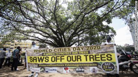 This year's March to protect and defend the Fig Tree and other urban natural spaces during the World Cities Day in Nairobi, Kenya. (Photo by Robert Bonet/NurPhoto via Getty Images)