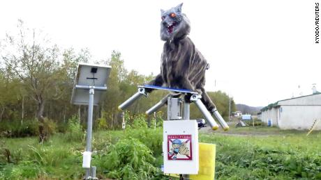 A robot called Monster Wolf, equipped with sensors that can detect bears or vermin, was installed in Takikawa, on Japan's northernmost main island of Hokkaido.