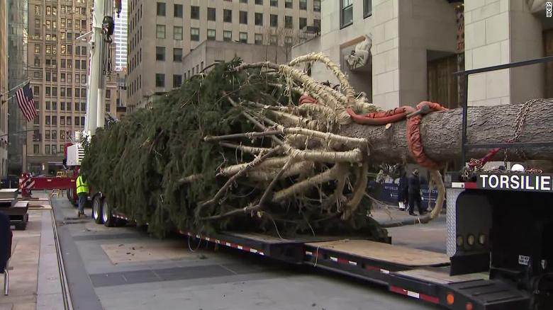 New York City's Rockefeller Center gets its Christmas tree