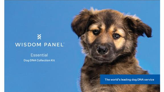Wisdom Panel Essential Dog DNA Kit