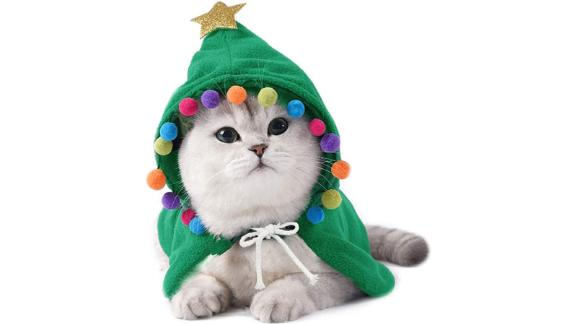 Christmas Cloak