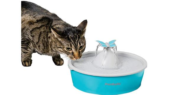 Petsafe Drinkwell Butterfly Fountain
