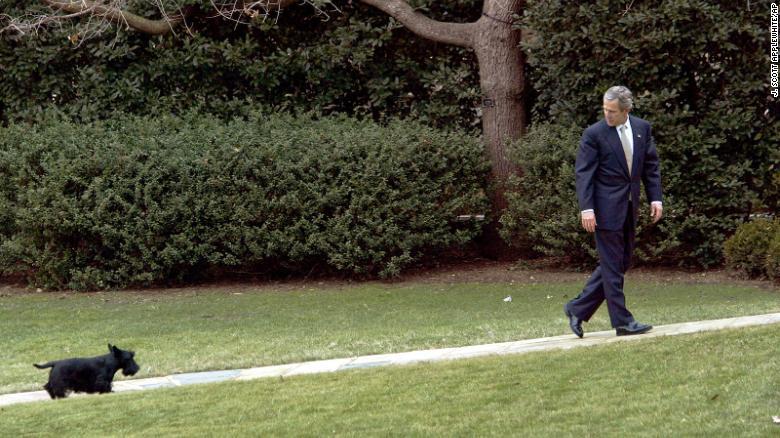 Il presidente George W. Bush con il suo cane Barney alla Casa Bianca nel 2003.