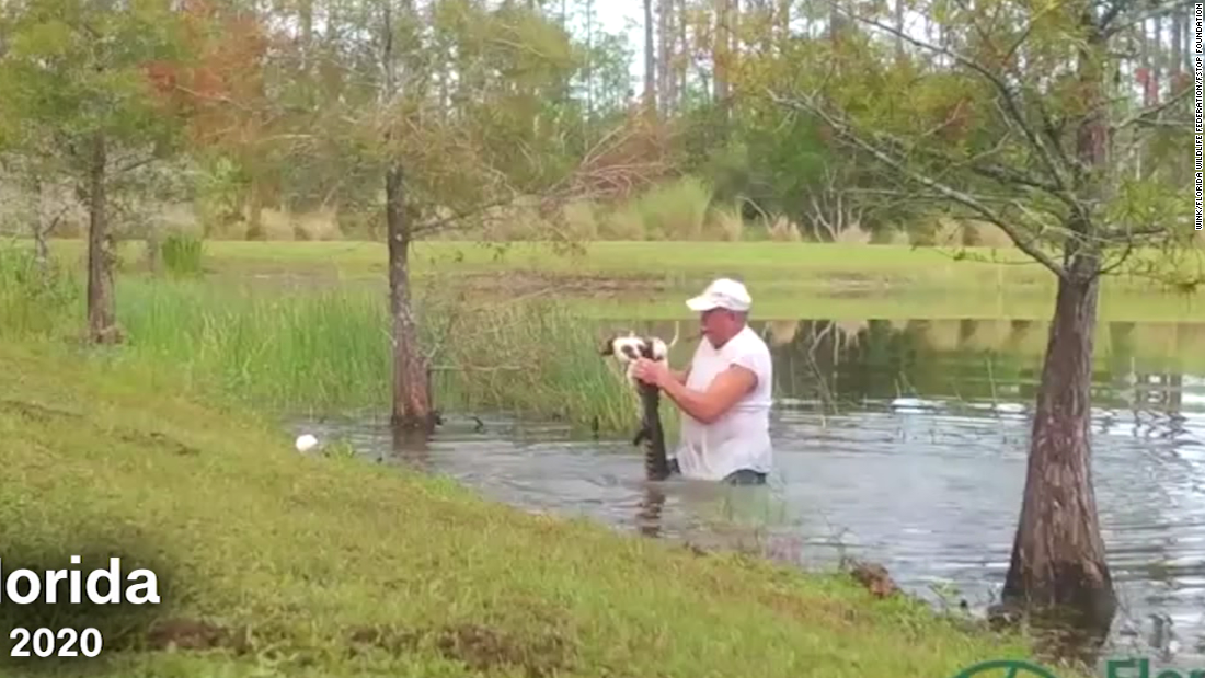 Man rushes into water after alligator snatched up his dog